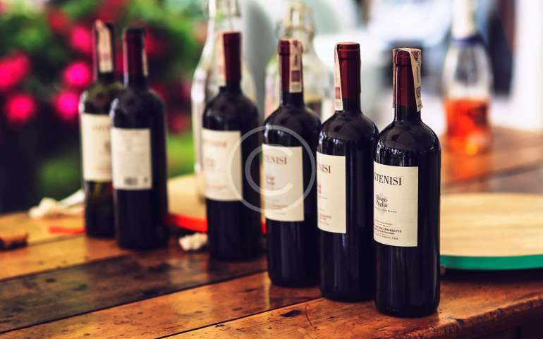 Италия: Земята на виното